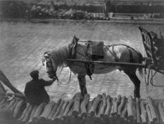 A man seated on a pile of logs and holding the reins of a horse pulling logs on a wagon. Paris,1911