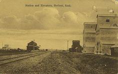 Station and elevators. Herbert, Sask.   saskhistoryonline.ca