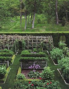 Window in the hedge. Are you kidding me, how very clever. Must do this with the new hedges. Beautiful Kitchen Garden.