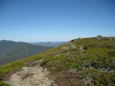 Glen boulder trail, White mountains national forest, Pinkham  Notch, New Hampshire