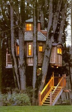 Very cool treehouse surrounded by a huge tree