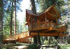 A wheelchair accessible tree house at Camp Prime Time, WA