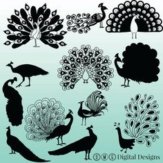 12 Peacock Silhouette Clipart Images Clipart by OMGDIGITALDESIGNS