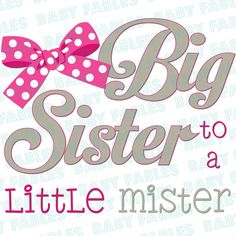 Iron on Transfer Big Sister to a Little Mister by babyfables