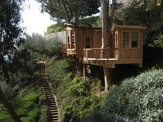 Pete Nelson's Tree Houses Let Homeowners Live the High Life