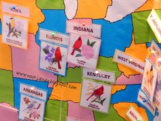 US States Geography with free printables from Noor Janan Homeschool