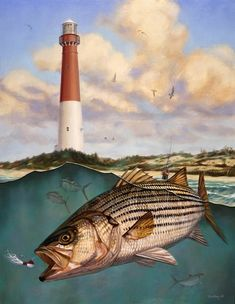Marine-Fish Artist Don Ray 05 barnegat light New Jersey for strippers.