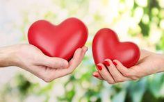 Baixar amor Dia dos Namorados coração mão Papel de parede de alta qualidade