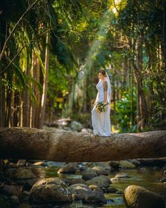 Check out this beautiful photo from Willidea Photography & Videography Studio THAT SUNRAY! Photo taken at Cedar creek lodge. Cedar Creek, Photography And Videography, Gold Coast, Brisbane, Reception, Wedding Day, Spaces, Bride, Studio