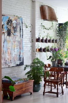 An Indoor Jungle Grows in a Brooklyn Apartment                                                                                                                                                     More