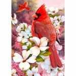 Crowned Cardinals Flag