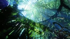 Plant life on Pandora is strange and even fantastic. Yet some plants on Pandora bear a striking resemblance to plants on Earth. The diver. Avatar Films, Avatar Movie, Stephen Lang, James Cameron, Michelle Rodriguez, Zoe Saldana, Alpha Centauri, Avatar Theme, Gas Giant