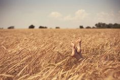 Free by Dmitry Makarchenko Cinematic Photography, Life Photography, Greek Pantheon, Fields Of Gold, Beach Poses, Felder, Picture Outfits, Halloween Photos, Adam And Eve