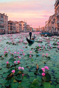 Have you been to Venise ? Beautiful Places To Travel, Cool Places To Visit, Wonderful Places, Beautiful Scenery, Romantic Travel, Beautiful Beaches, Dream Vacations, Vacation Spots, Italy Vacation
