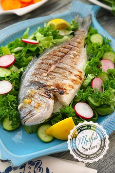 Tost Makinesinde Çipura – Atıştırmalıklar – The Most Practical and Easy Recipes Fish Dishes, Seafood Dishes, New Recipes, Dinner Recipes, Healthy Recipes, Turkish Recipes, Ethnic Recipes, Shellfish Recipes, Food Packaging Design