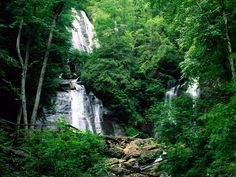 Explore the Chattahoochee National Forest.