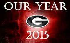 Our year 2015