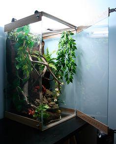 philipbrowning.com -- the terrarium