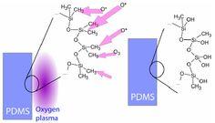 Oxygen plasma treatment of PDMS