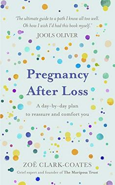 Pregnancy After Miscarriage, Pregnancy After Loss, Pregnancy And Infant Loss, Losing A Baby, Facing Fear, Frequent Flyer Program, Day Plan, Rainbow Baby, Book Nooks