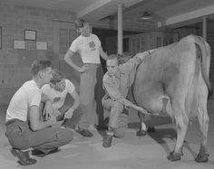 Google Image Result for http://www.ca.uky.edu/agcollege/4h/History/content/1940s/images/acp_4h_4H473.jpg