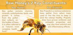 raw honey healthy ingredients bee pollen and bee propolis