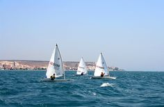 Regata Vela Optimist Santa Pola