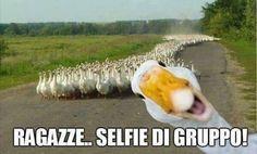 18618 Selfie di gruppo