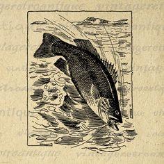 Fishing Digital Image Download Fish Graphic Antique Illustration Printable Vintage Clip Art Jpg Png Eps 18x18 HQ 300dpi No.3838 @ vintageretroantique.etsy.com