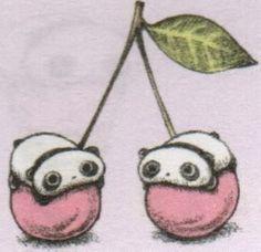tare panda on cherries