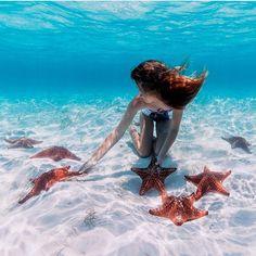 Starfish garden Great Exuma - Bahamas. Pic @ElenaKalis & @_BahamasGirl_ by bestplaces_togo