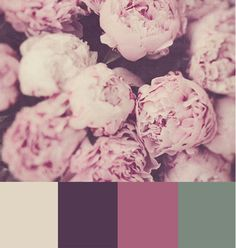 cream. plum. rose. green.