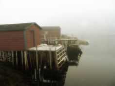 Foggy day in Rock Harbour, Newfoundland