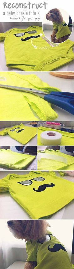 Check out 12 DIY Dog Clothes and Coats | Baby Onesie to Dog Shirt by DIY Ready at diyready.com/...