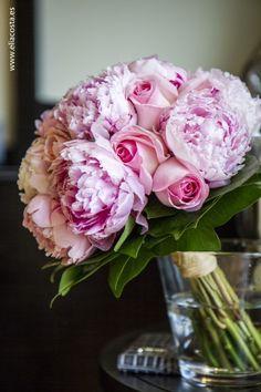 peonia y rosas