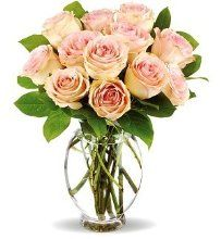 Order Teleflora's Delicate Dozen from Heaven's Scent Florist, your local Republic and Springfield florist. Send Teleflora's Delicate Dozen for fresh and fast flower delivery throughout Republic and Springfield, MO area. City Flowers, Love Flowers, Beautiful Flowers, Fresh Flowers, Funeral Flower Arrangements, Funeral Flowers, Floral Arrangements, Floral Centerpieces, Blush Roses
