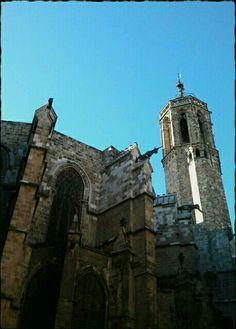 L'Unicorni. La Catedral de Barcelona.