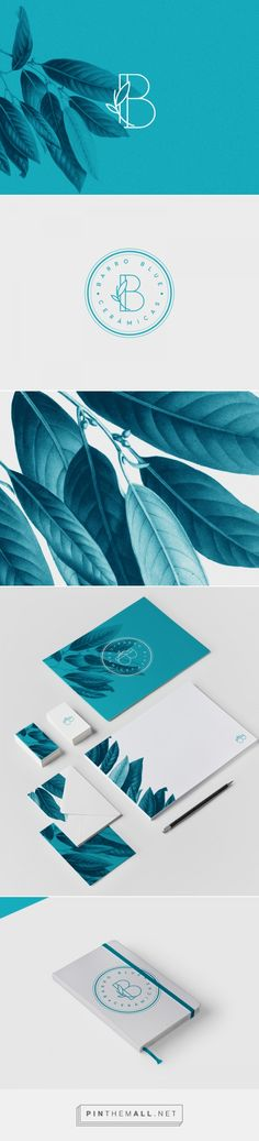 BARRO BLUE on Behance.