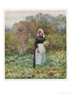 Picking Vegetables in an English Vegetable Garden Giclee Print by Helen Allingham at AllPosters.com