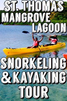 St. Thomas Mangrove Lagoon Snorkeling and Kayaking Tour