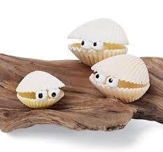 Resultado de imagen de manualidades con conchas de mar