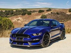 Cool Ford 2017: 2016 Ford Shelby GT350 Mustang... Car24 - World Bayers Check more at http://car24.top/2017/2017/04/24/ford-2017-2016-ford-shelby-gt350-mustang-car24-world-bayers-5/