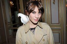 pigeons love Alexa Chung too