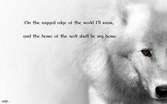 Download Wallpaper ID 1566801 - Desktop Nexus Animals