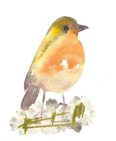 vogeltje 8