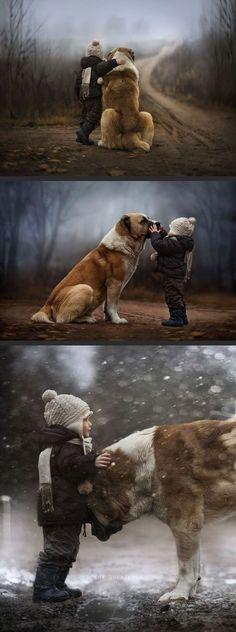 Winter's friend by L&L1114