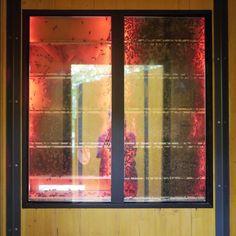 View Window mirror beehive Zoo Tiergarten Schönbrunn Blick Fenster Spiegel Bienenstock - P1490178