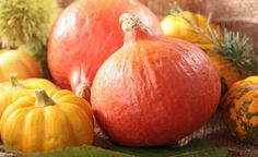 (Zentrum der Gesundheit) – Hätten Sie's gedacht? Der Kürbis ist eine Beere! Lernen Sie mit uns das klassische Herbstgemüse auf dreifache Weise kennen. Denn nicht nur das schmackhafte Fruchtfleisch mit seinem hohen Gehalt an antioxidativem Beta-Carotin kann Ihren saisonalen Speiseplan aufmischen. Knackige Kürbiskerne und hochwertiges Kürbiskernöl liefern das ganze Jahr über essentielle Fettsäuren sowie sekundäre Pflanzenstoffe, deren natürliche Heilkräfte unterschiedlichste Beschwerden ...