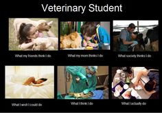 Life of vet tech students! Hopefully this will be me very soon!