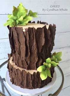 Xmas Food, Christmas Desserts, Christmas Log, Fancy Cakes, Cute Cakes, Campfire Cake, Woodland Cake, Wood Cake, Wedding Cake Rustic